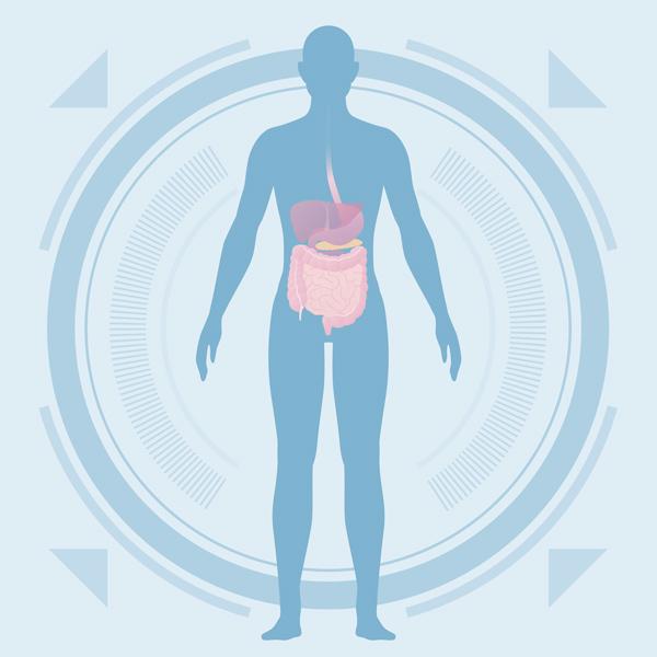 Troubles digestifs appareil digestif